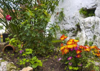Hacienda El Molino 08